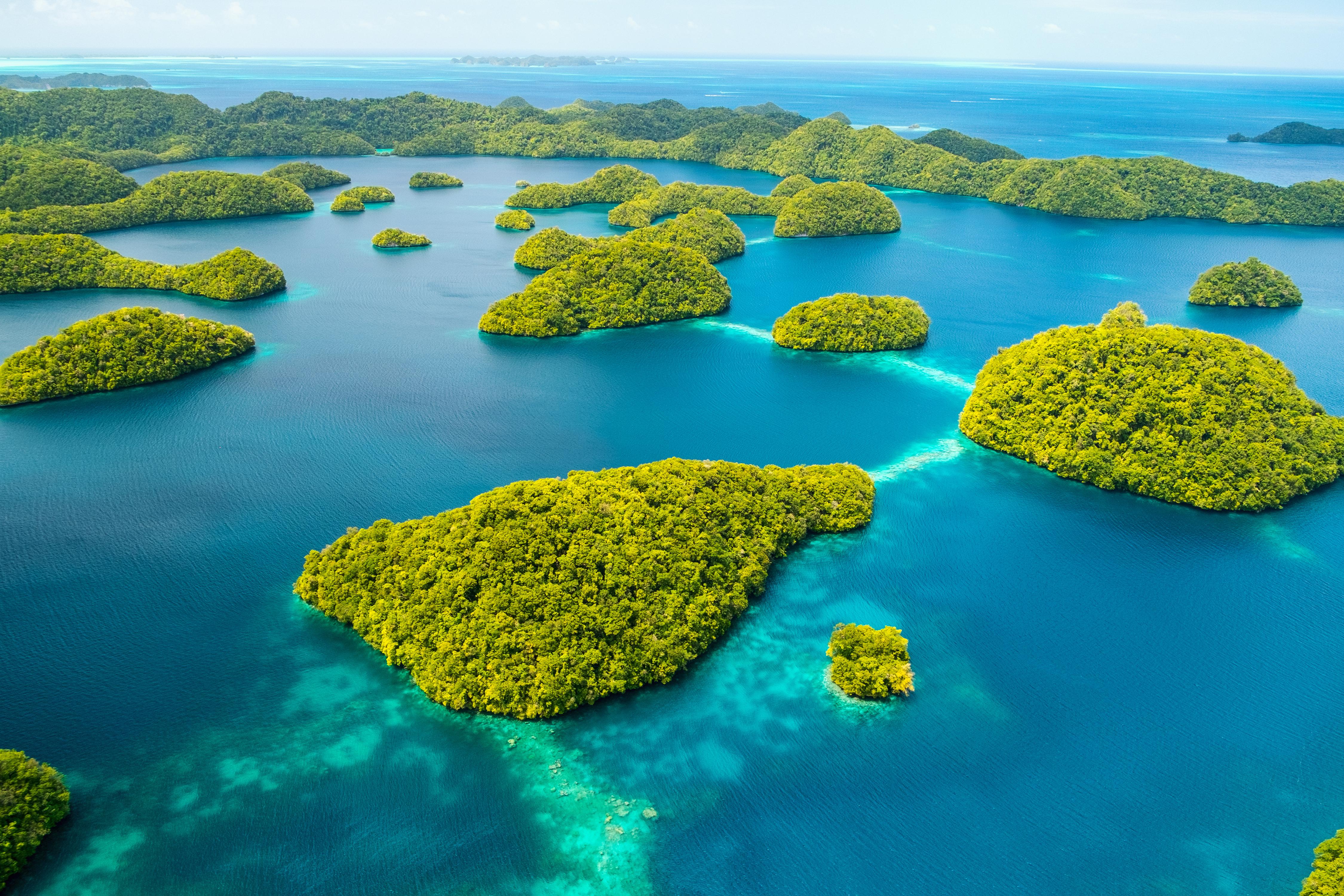 帛琉旅遊泡泡